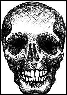 Free Death Skull Royalty Free Stock Image - 8878146