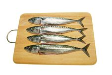 Mackerel On Board Royalty Free Stock Images