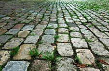 Free PUBLIC DOMAIN PIXABAY Digionbew 10 June July Cobbles In The Park LOW RES DSC02303 Royalty Free Stock Images - 88752509