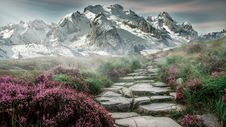Free Stone Path In Valley Royalty Free Stock Image - 88756676