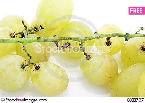 Free Grapes Royalty Free Stock Photography - 8888707