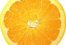 Closeup Orange