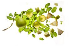 Free Spring Salad Stock Photos - 8883433