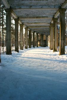 Free Winter Colonnade Stock Images - 8884644