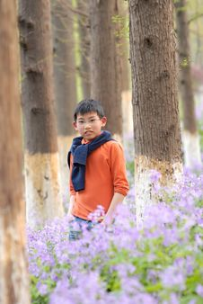 Asian Boy Standing In The Bloom Stock Images