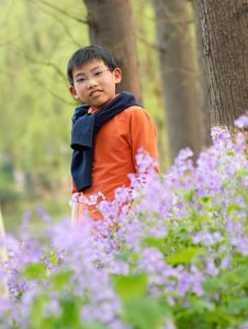 Chinese Boy Standing In The Bloom Royalty Free Stock Image