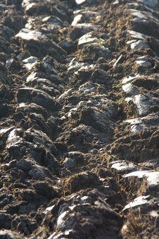 Free Fertile Soil Stock Photos - 8888053