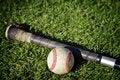 Free Baseball Stock Image - 8892791