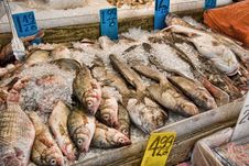 Free Fish For Sale Stock Image - 8890251
