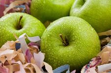 Free Green Apples Stock Image - 8890891