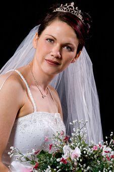 Free White Bride Stock Photo - 8891840