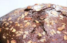 Free Chocolate Cake Close Up Stock Image - 8893621