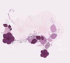 Free Spring Background Stock Image - 8893891