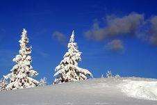 Free Together Through Snow Stock Photo - 8894990