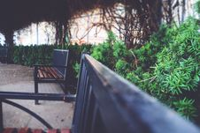 Free Benches In A Garden  Royalty Free Stock Photography - 88983827