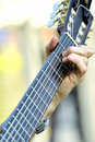 Free Guitar Neck Stock Photography - 891522