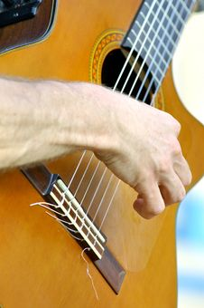 Free Guitar And Strings Stock Images - 891584