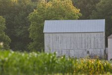 Free Barn In Cornfield Stock Photos - 893483