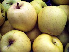 Free Yellow Apples Stock Photos - 893583