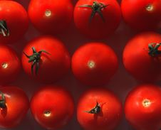 Free Bloody Tomatoes Royalty Free Stock Photos - 894708