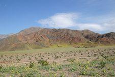 Free Rugged Desert Terrain Of Death Valley Stock Photo - 896670