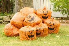 Free Halloween Stock Image - 896871