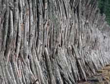 Free Wooden Fence Royalty Free Stock Images - 898679