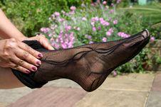 Free Leg  In Stockings Stock Photo - 899240