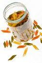 Free Colored Macaroni Royalty Free Stock Photo - 8900235