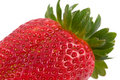 Free Strawberry Isolated Stock Photography - 8901462