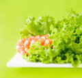 Free Delicious Salad Of Shrimps Royalty Free Stock Image - 8907416