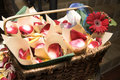 Free Basket With Petals Stock Image - 8909201