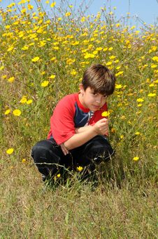 Free The Boy With Yellow Single Flower Stock Photo - 8904470