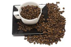 Free Coffee Mug Royalty Free Stock Images - 8905139