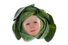 Baby Among Cabbage Leaves