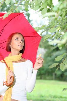 Free Red Umbrella Stock Photos - 8907533