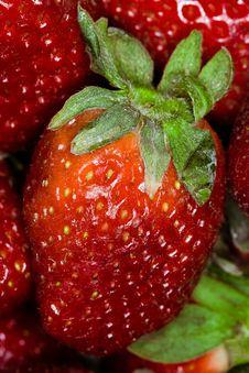 Free Strawberry Macro Royalty Free Stock Photo - 8908765