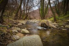 Free Stream Flowing Through Woods Royalty Free Stock Photo - 89060595