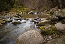 Free Creek In Forest Royalty Free Stock Images - 89060649