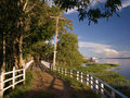 Free Wooden Fence Royalty Free Stock Photo - 8915315
