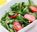 Free Fresh Salad Stock Photography - 8919632