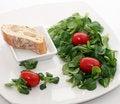 Free Fresh Salad Stock Images - 8919934