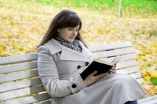 Girl Who Reads The Book In The Park Stock Photography