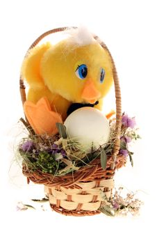 Chicken And Egg In The Basket Royalty Free Stock Photo