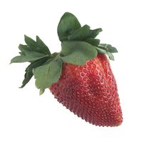 Free Strawberry W/clipping Path Stock Image - 8913861