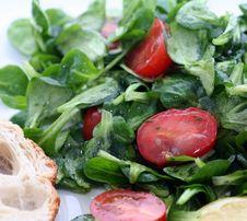Free Fresh Salad Royalty Free Stock Photo - 8918605