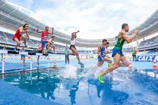 Free Group Of Runners Running On Watery Track During Daytime Stock Photos - 89192473