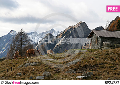 Free Mountain Chalet On Alps Stock Photography - 8924782