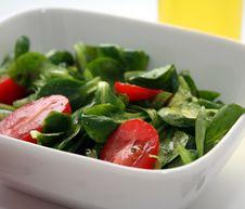 Free Fresh Salad Stock Image - 8920131