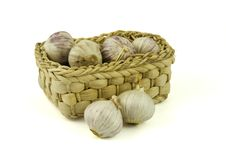 Free Basket Full Of Fresh Garlics Royalty Free Stock Photos - 8927338
